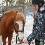В Тольятти дети с инвалидностью приобщаются к конному спорту