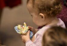 Объявлен набор мастеров и волонтеров в «Школу ватной игрушки»